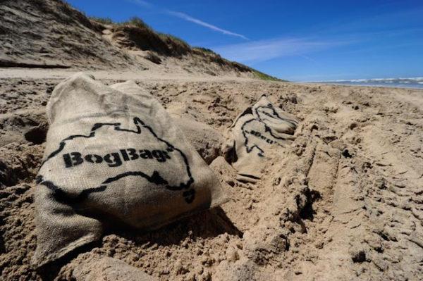 BogBags on the beach